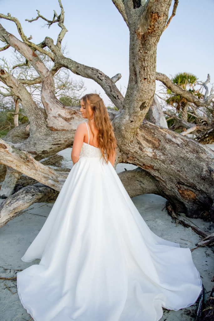 back of lace and organza ballgown wedding dress